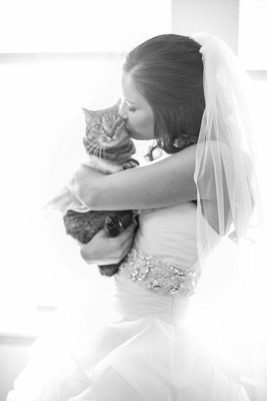 Easy Weddings Animals Scott & Ashley Britton Reynolds Photography