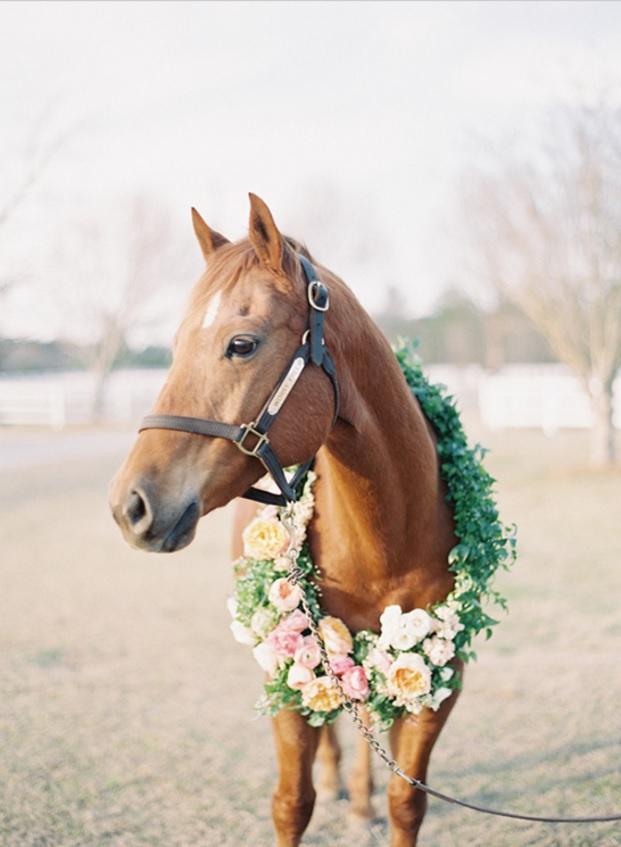 Easy Weddings landonjacobphotography