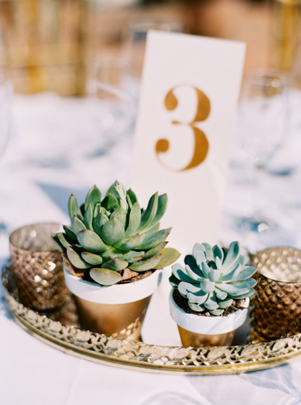 succulent centrepieces for wedding